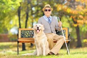 a blind man sitting on a park bench with cane and dog
